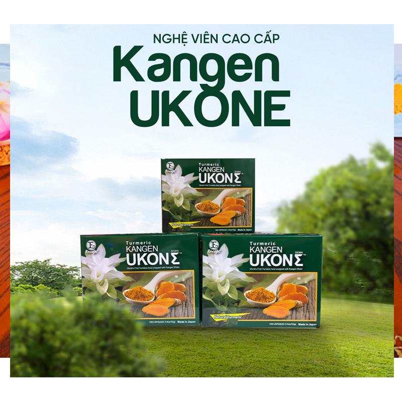 Viên dầu nghệ Kangen Ukon Nhật Bản